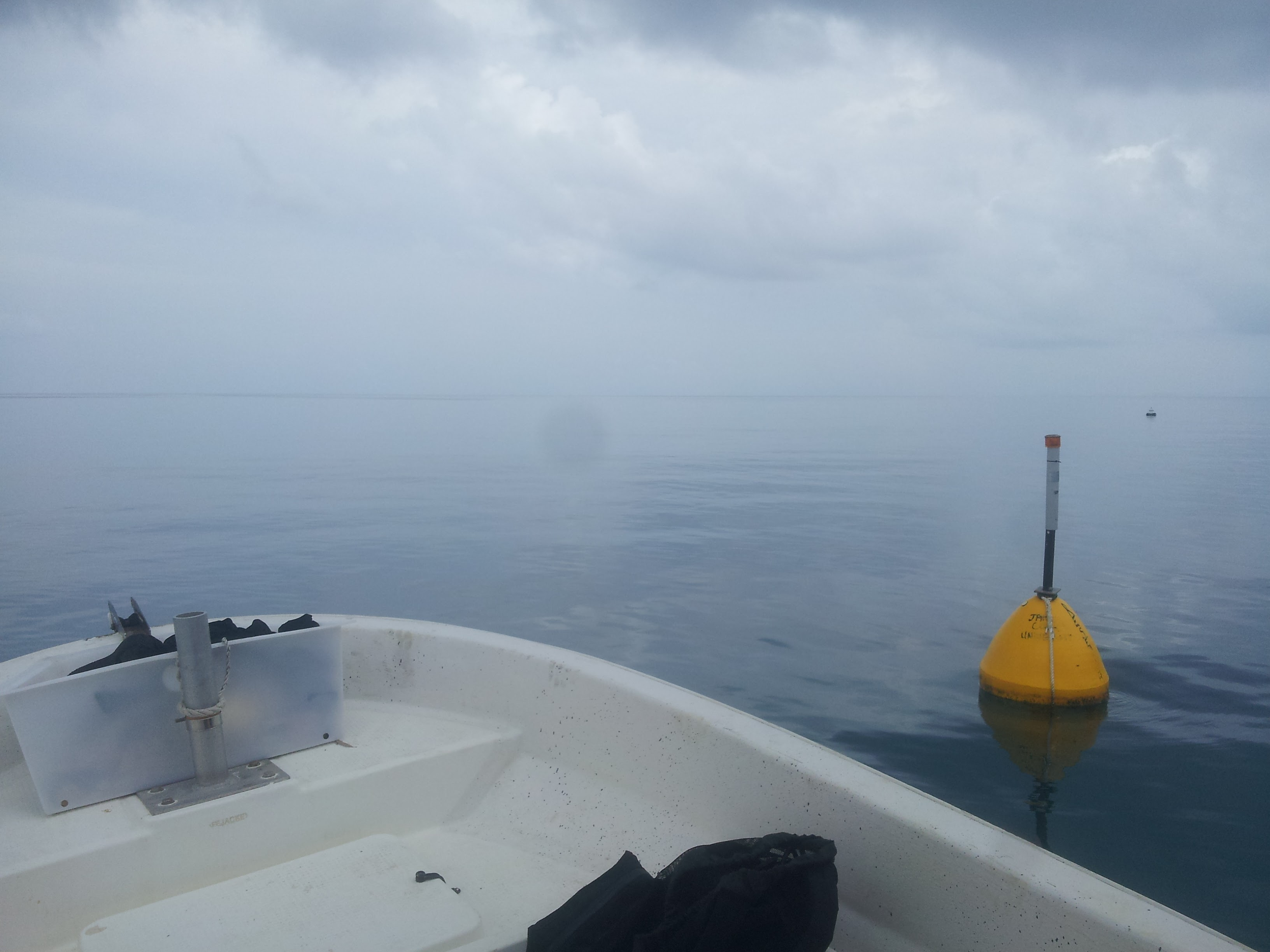 Nephelometer deployed - Surface buoy
